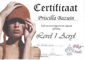 Level 1 Acryl - Pika Nails
