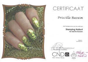 Stamping Nailart- Pika Nails